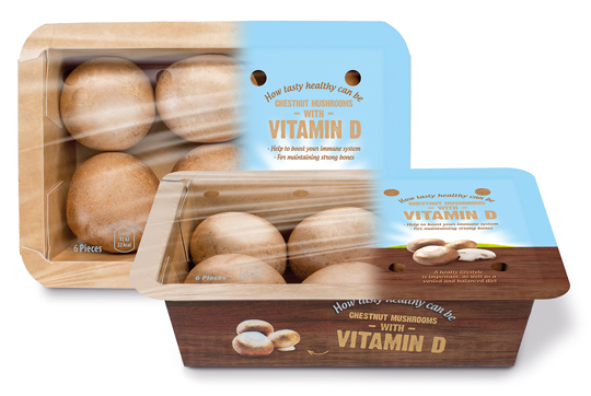 blog_banken_mushrooms_vitamin_D